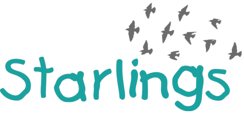 Starlings After School Club